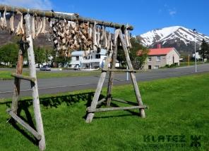 Islandija_031