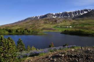 Islandija_032
