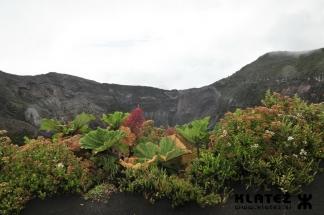 Kostaria_29