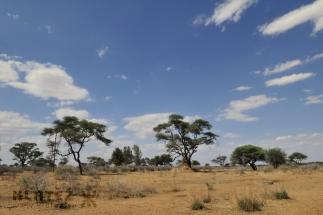 Namibija_010