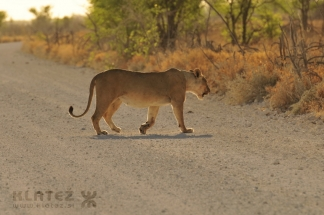 Namibija_014