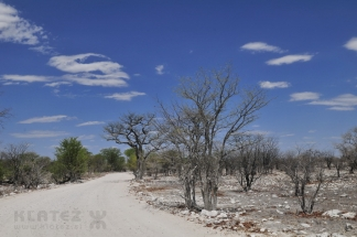 Namibija_015
