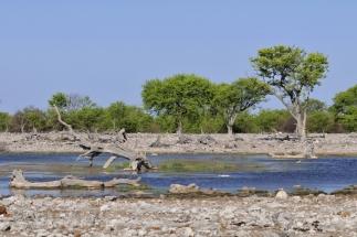 Namibija_030