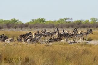 Namibija_041