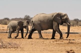 Namibija_047