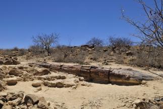 Namibija_066