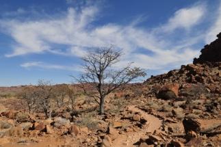 Namibija_067