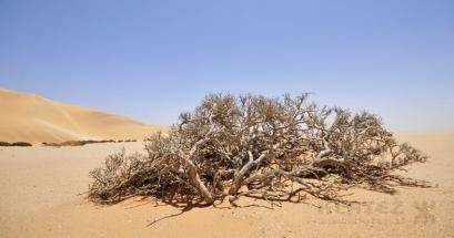 Namibija_082