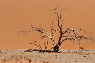 Namibija_097
