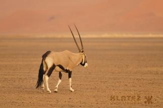 Namibija_099