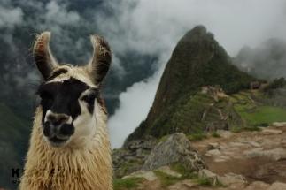 Peru_020