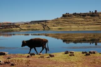 Peru_037