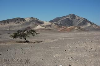 Peru_071
