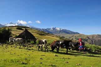 Peru_110