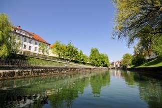 Ljubljanica_13