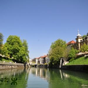 Zelena reka