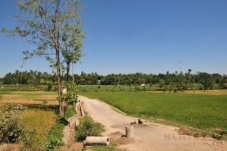 Lombok_12
