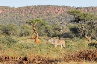 Namibija_2017_010_resize