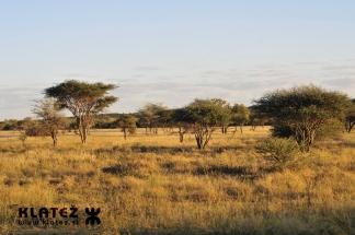 Namibija_2017_015_resize