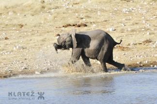 Namibija_2017_023_resize