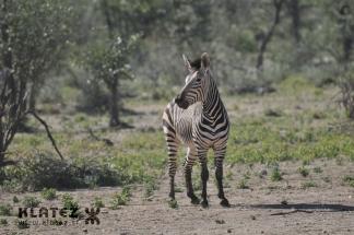 Namibija_2017_043_resize