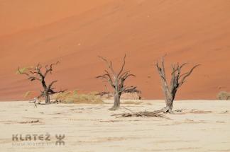 Namibija_2017_099_resize