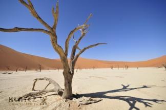 Namibija_2017_103_resize