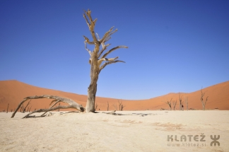 Namibija_2017_104_resize