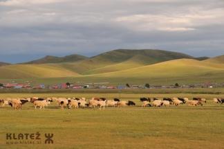 Mongolija_032