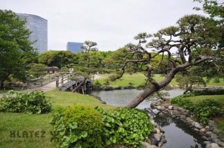 Japonska_010