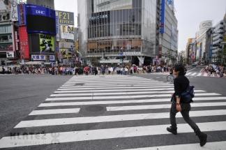 Japonska_011