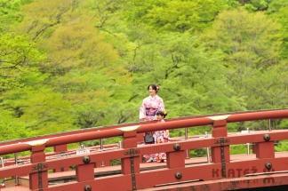 Japonska_021