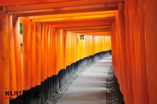 Japonska_069