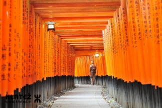 Japonska_070