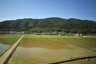 Japonska_099