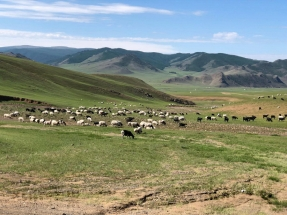 Mongolia_32