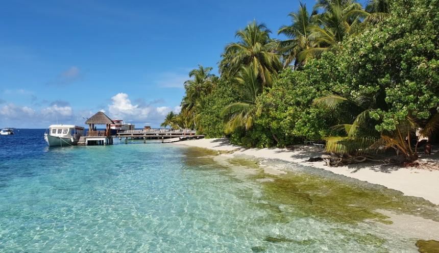 Koronski Maldivi