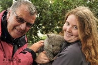 wombat 23